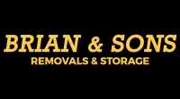 Brian and Sons Logo